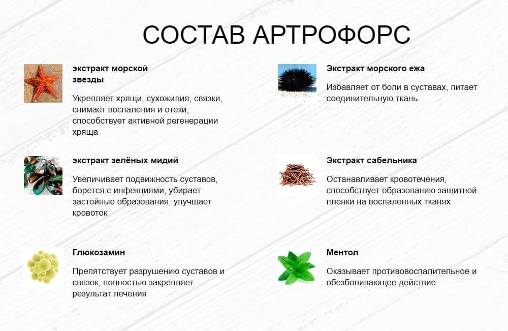 Состав геля Артрофорс